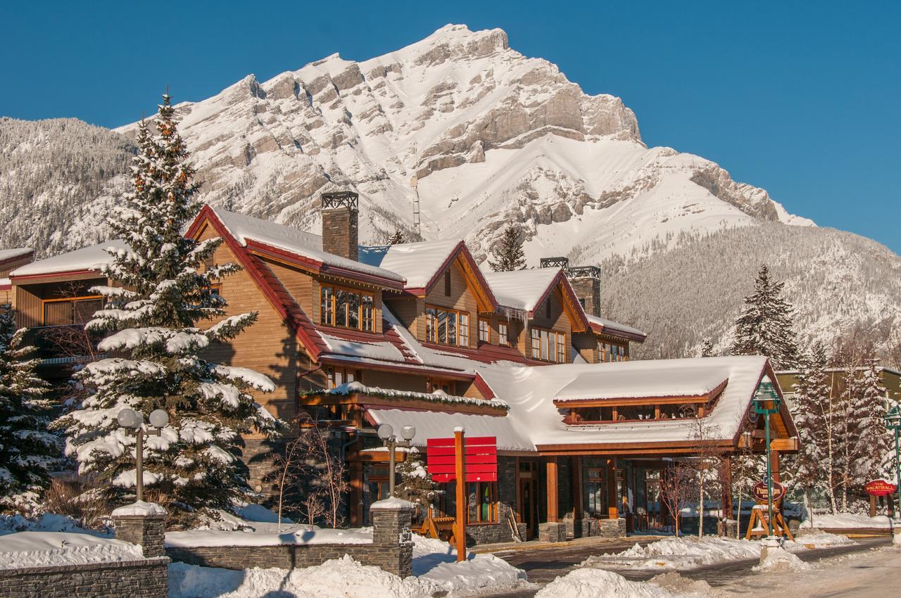 Ptarmigan Banff