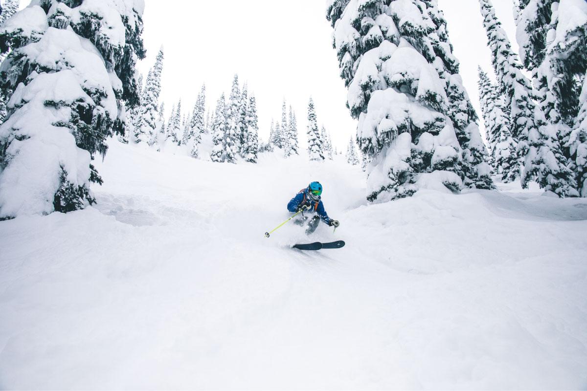 Ski Safari lleno de Powder en la Powder Highway