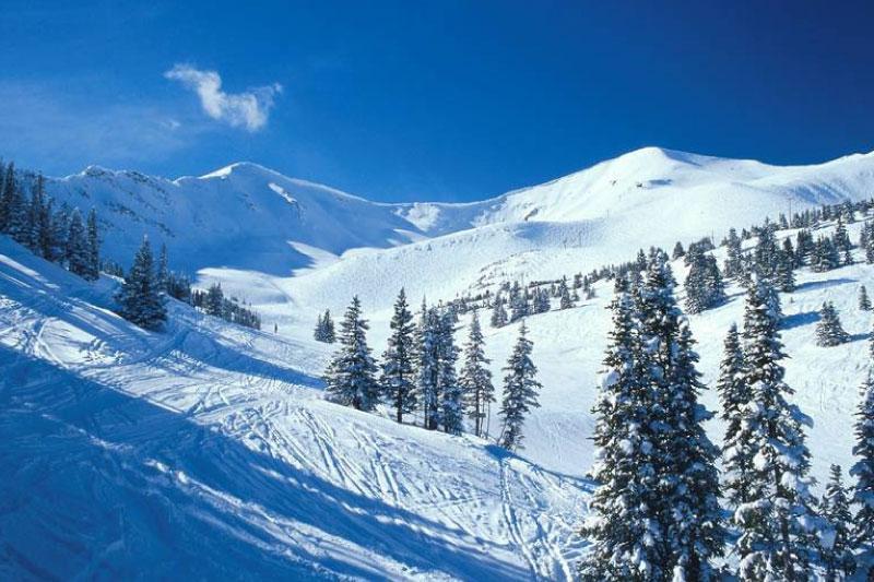Ski Safari Canadá Marmot Basin